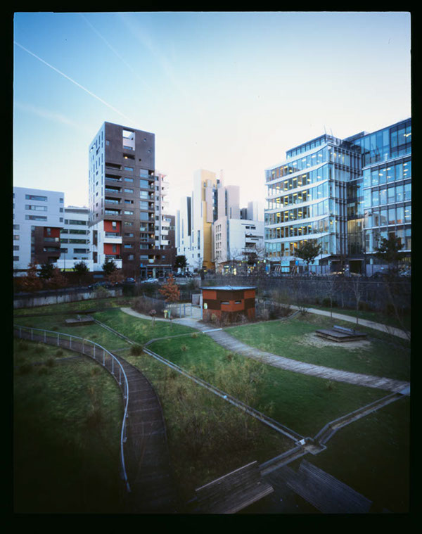 Photographie architecture végétale jardin immeubles Paris