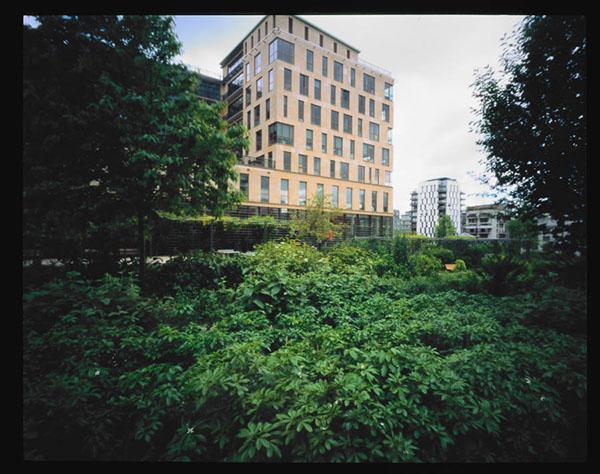 Photographie architecture végétale immeuble bureau Paris