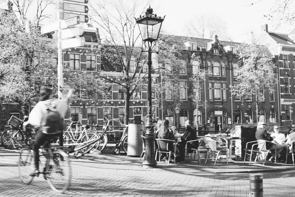 Mikaela Hamilton- Belgium-Amsterdam-35.jpg