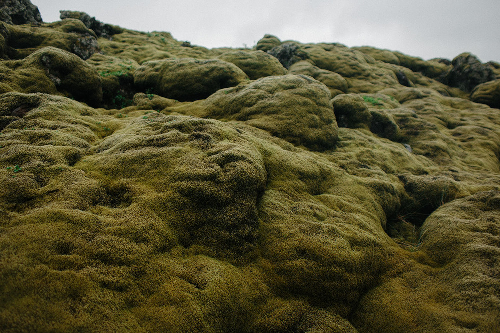 Mikaela Hamilton- Iceland-162.jpg