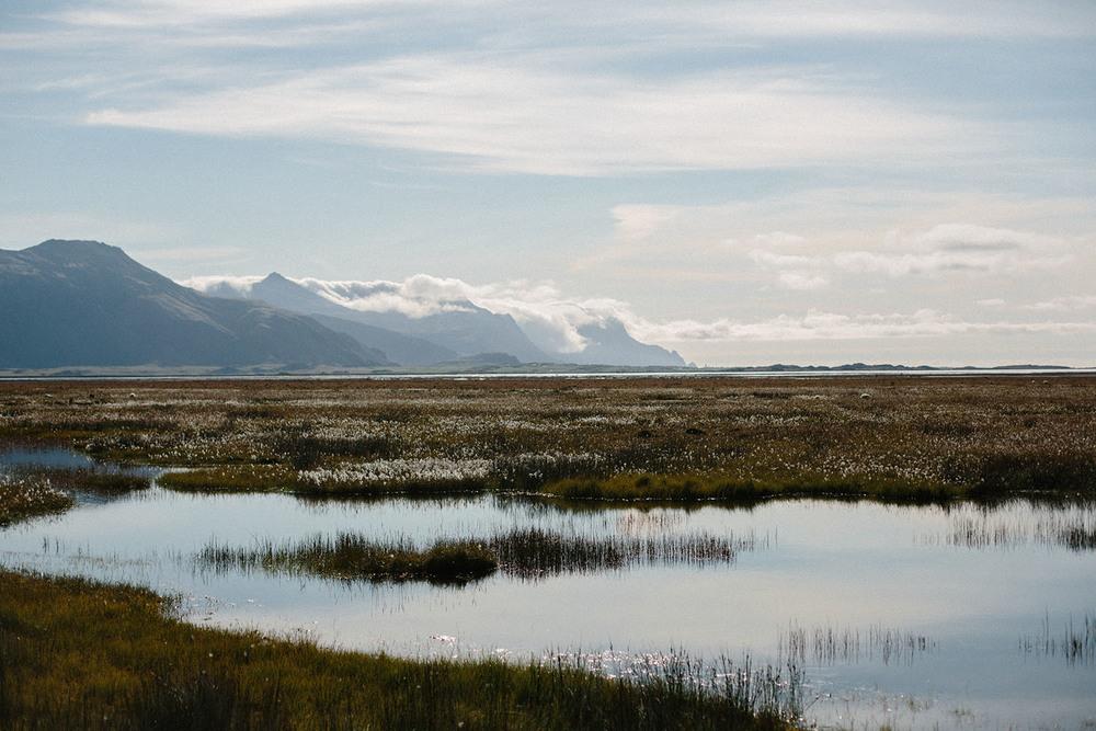 Mikaela Hamilton- Iceland-313.jpg
