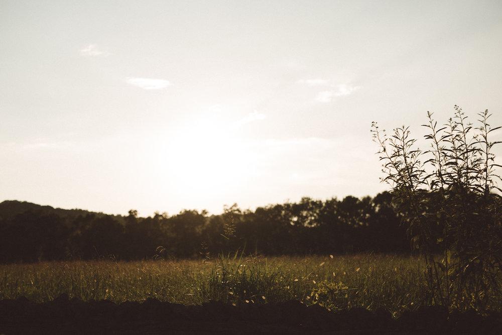 Mikaela Hamilton- LL Sunny Day Paddle-Leipers-42.jpg