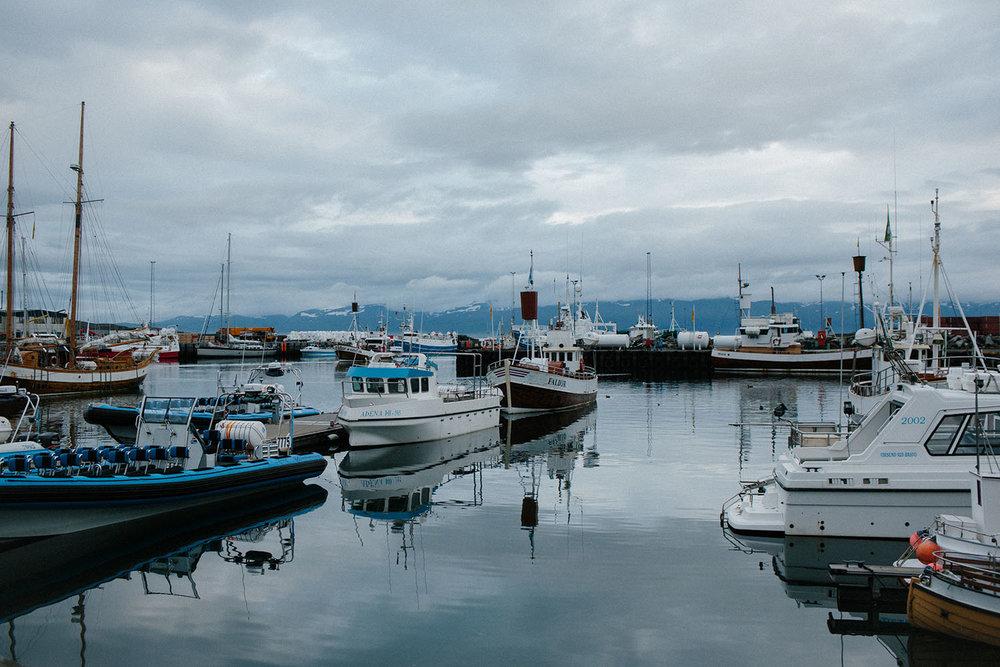 Mikaela Hamilton- Iceland-492.jpg
