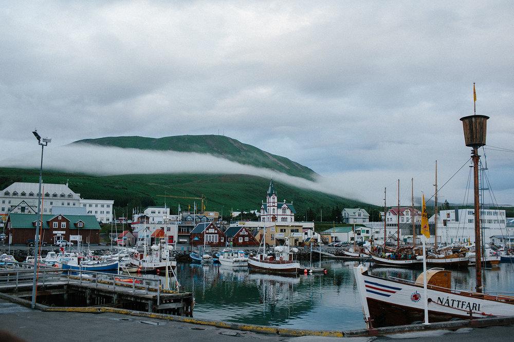 Mikaela Hamilton- Iceland-497.jpg