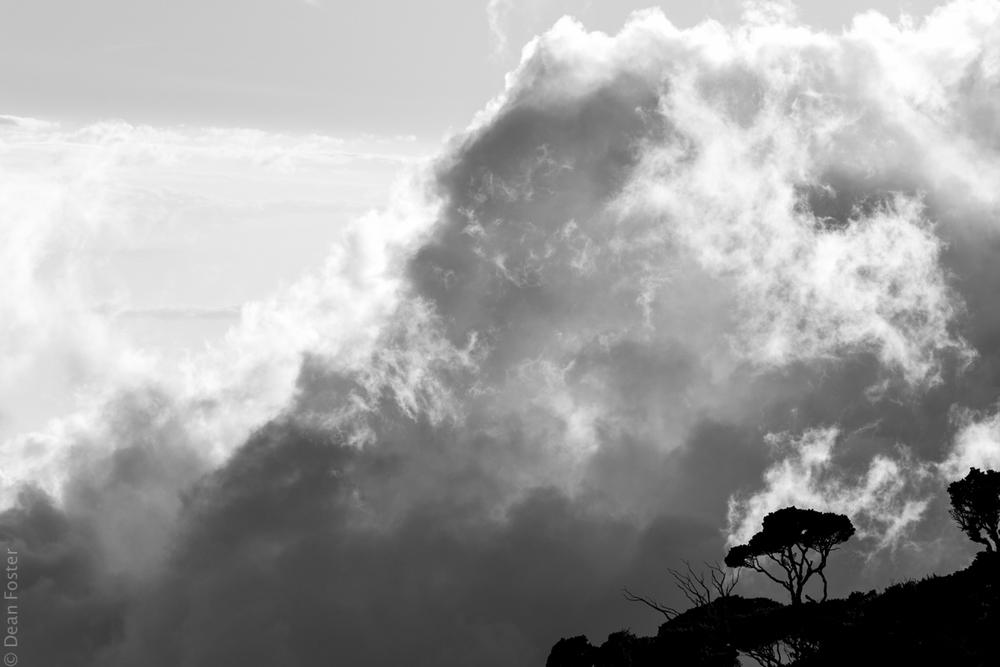 MountKinabalu-5964.jpg