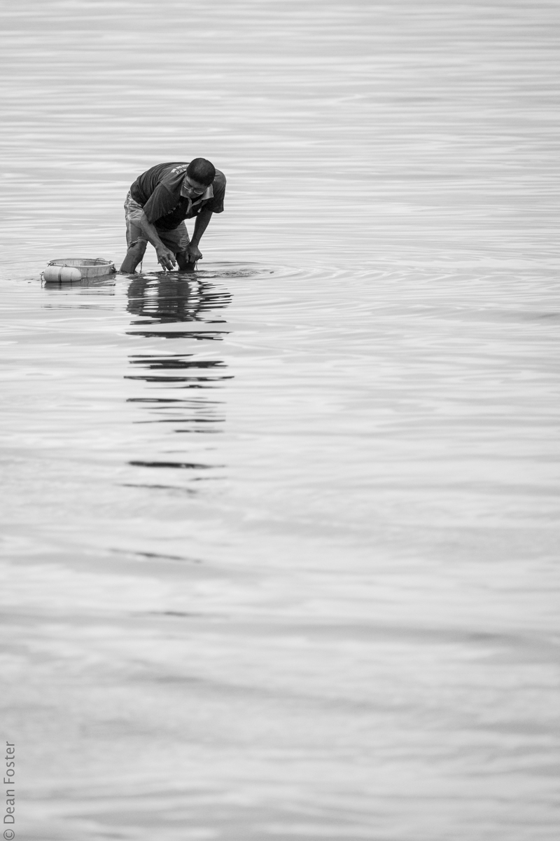 Fisherman harvests clams at first light
