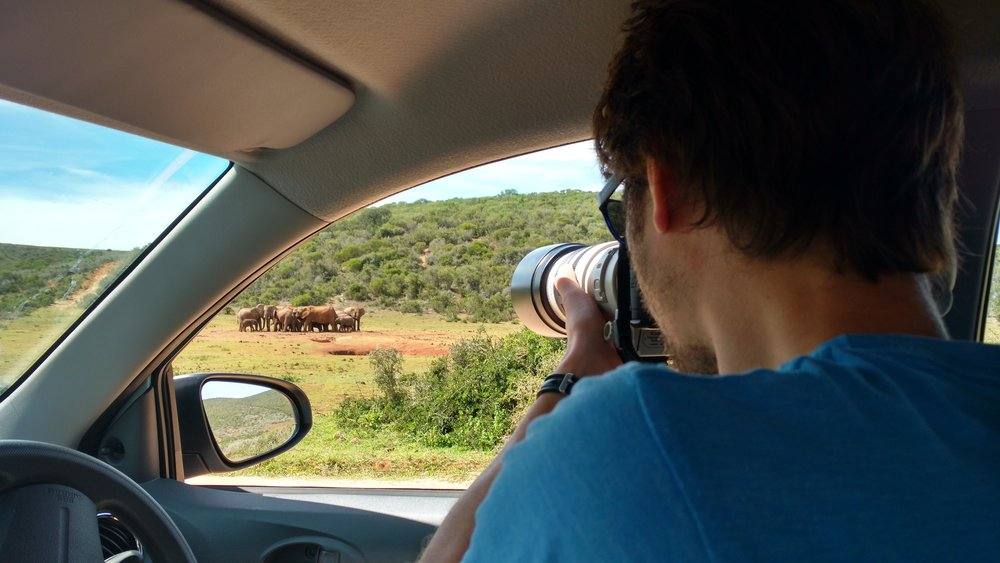 Self Drive Safari - We were able to sit and watch these elephants as long as we pleased