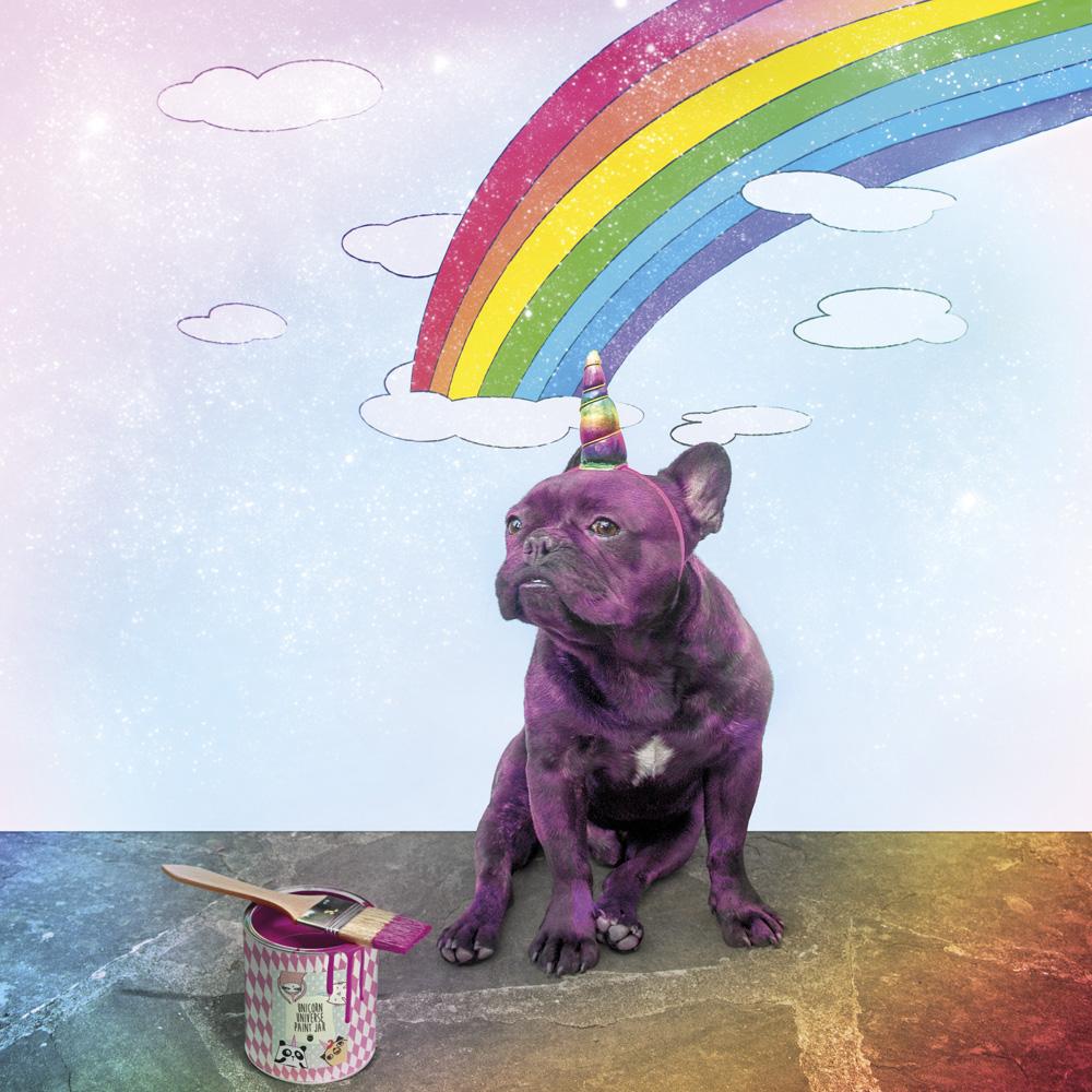 ...tanti animaletti colorati possono diventare unicorni con quel pizzico di magia che rende incantate le nostre feste. -