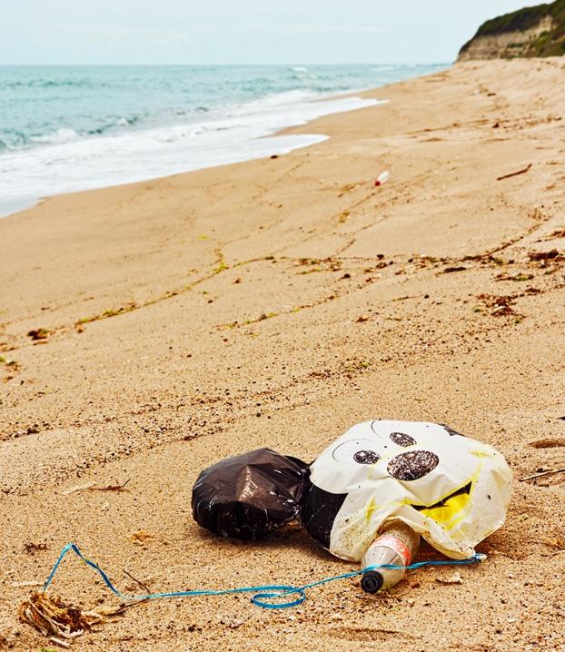 Nella campagna International Coastal Clean-up condotta sulle spiaggie di 91 paesi del mondo, nella top 10 degli oggetti inquinanti più raccolti troviamo:cannucce di plastica, buste di plastica miste, piatti e bicchieri di plastica. -