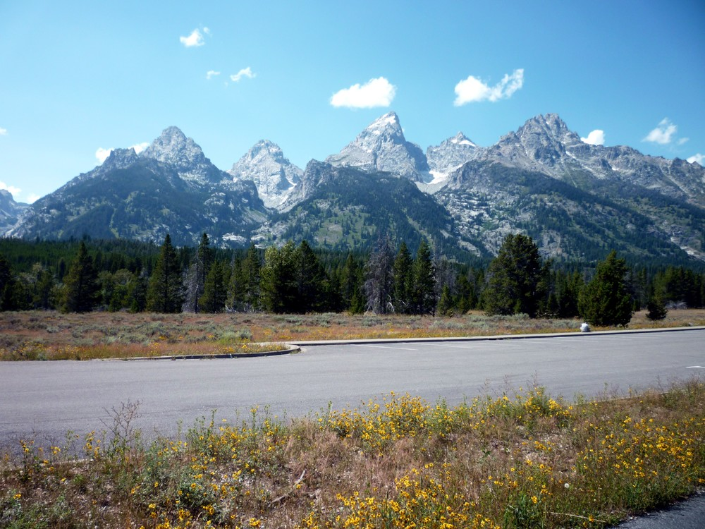 The view of the Grand Tetons from the road.