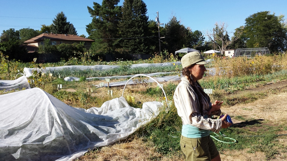 Farmer Meg explains about this urban farm's social enterprise model.