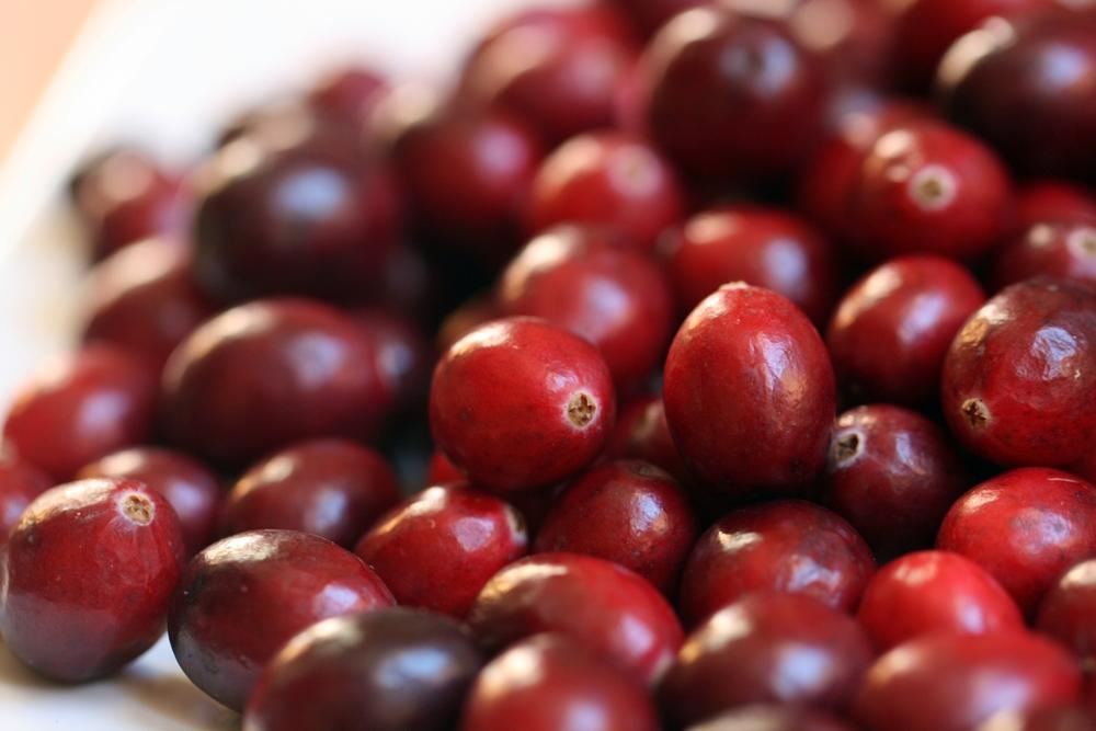 sustainable food cranberries los angeles