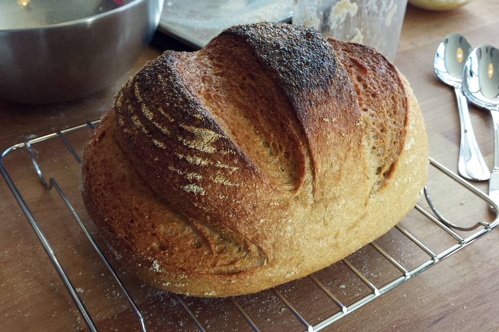 unprocessed whole grain bread