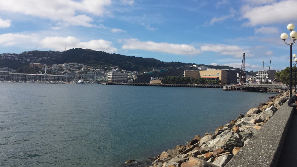 The Wellington harbor.