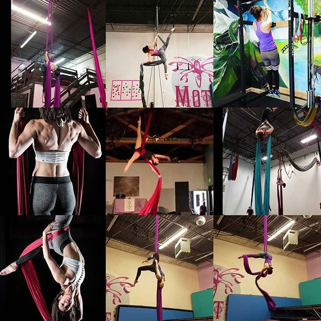 My 2018 in review! Thank you to my Insta fam for the aerial love all year! Here's to flying and new adventures in 2019. 🎪🎪😍😍 #topnine2018 #newyearseve #yearinreview . . . #aerialnation #aerialist #circuseverydamnday #usaerial #dancer #circusarts #aerialsilks #aerialfabric #aerialistsofinstagram #aerialistsofig #aerialworkout #choreography #aerialdance #coreworkout #core #aerialdance #inversions #verticalwise #workout #inspiration#denver #colorado #denverfitness #flexibility #coloradofitness