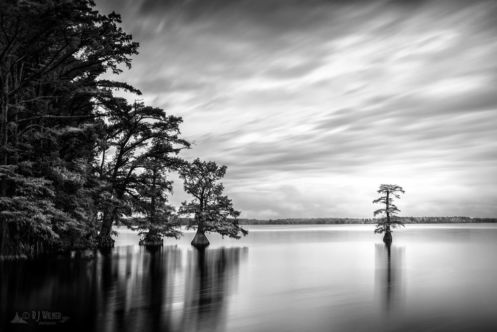 Reelfoot Lake 042