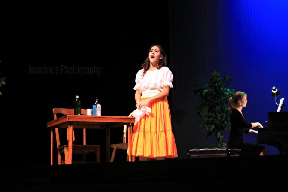 American Vignettes Scenes Program, 2013