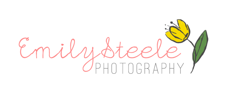 Emily Steele Photography, LLC