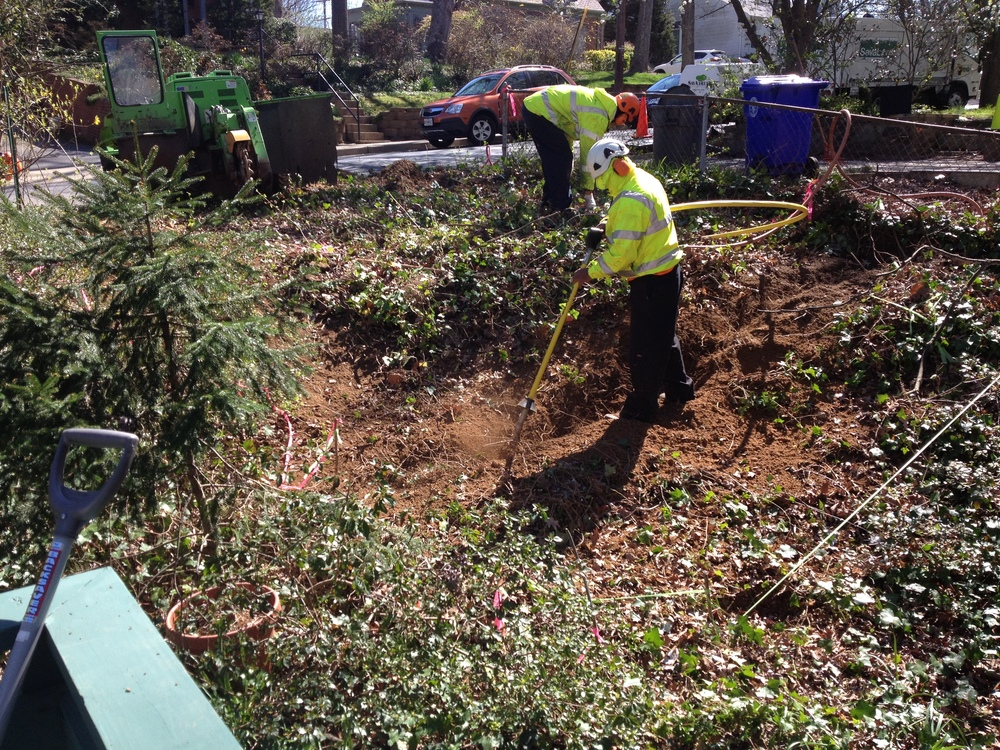 Pneumatic excavation of trench for retaining wall foundation to protect existing mature oaks.