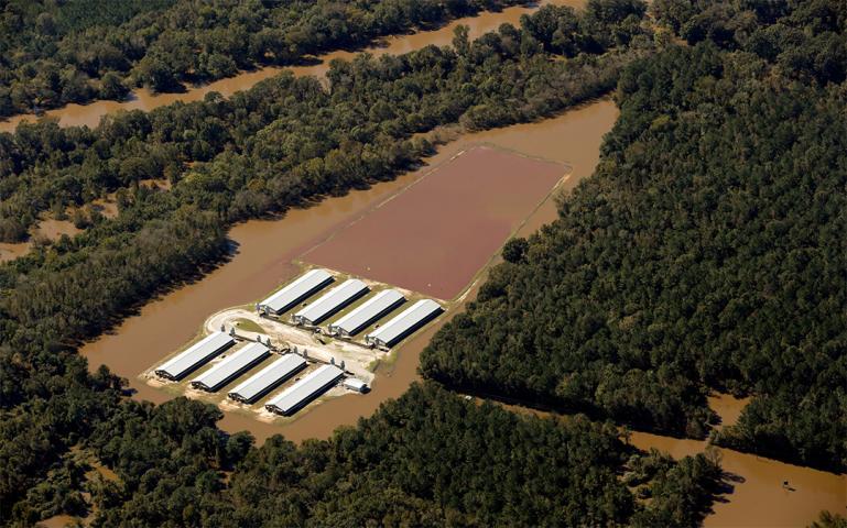 Watershed contamination