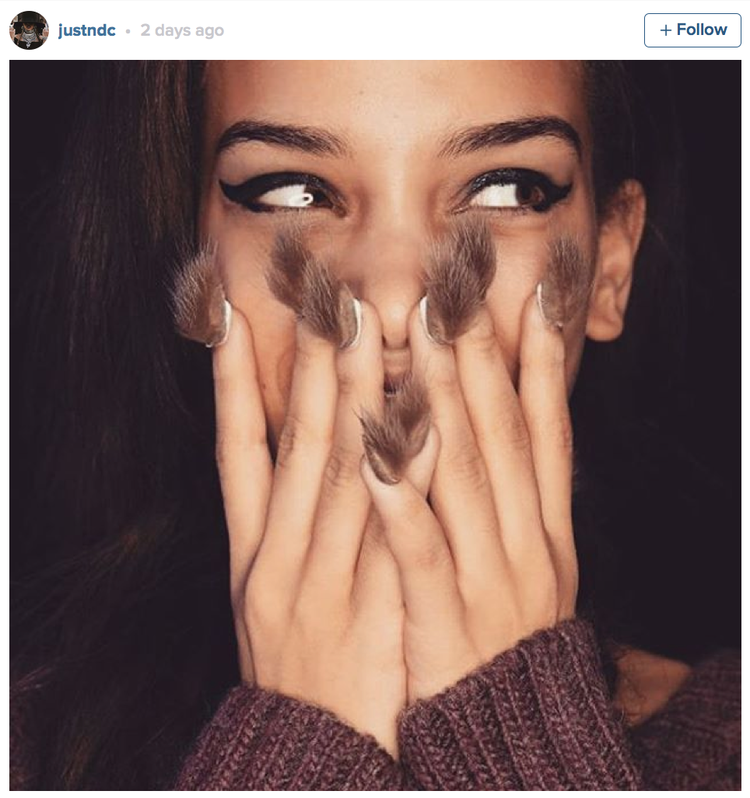 These Furry Manicures Prove Nail Trends Have Officially Gone Too Far ...