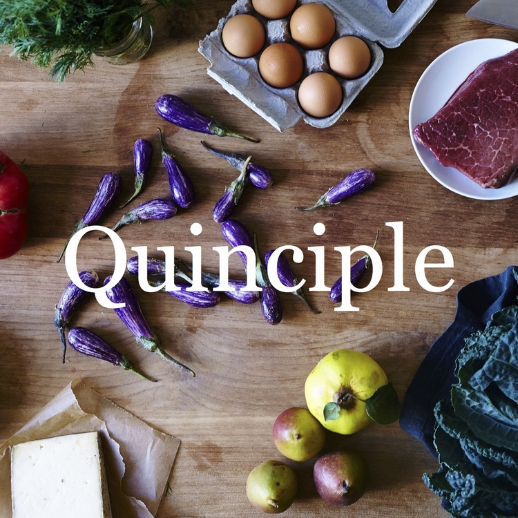 Quinciple+Thumbnail.jpg