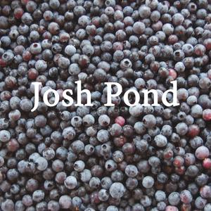 JoshPond.png