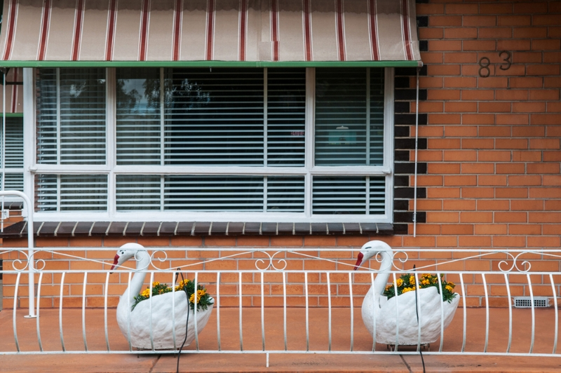 Patio Swans Altona North. Image taken by - Warren Kirk. Image Source - Excerpt Magazine.