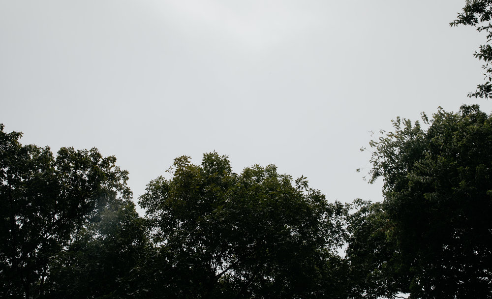 EvanCodyWedding+Highlights3-005.jpg