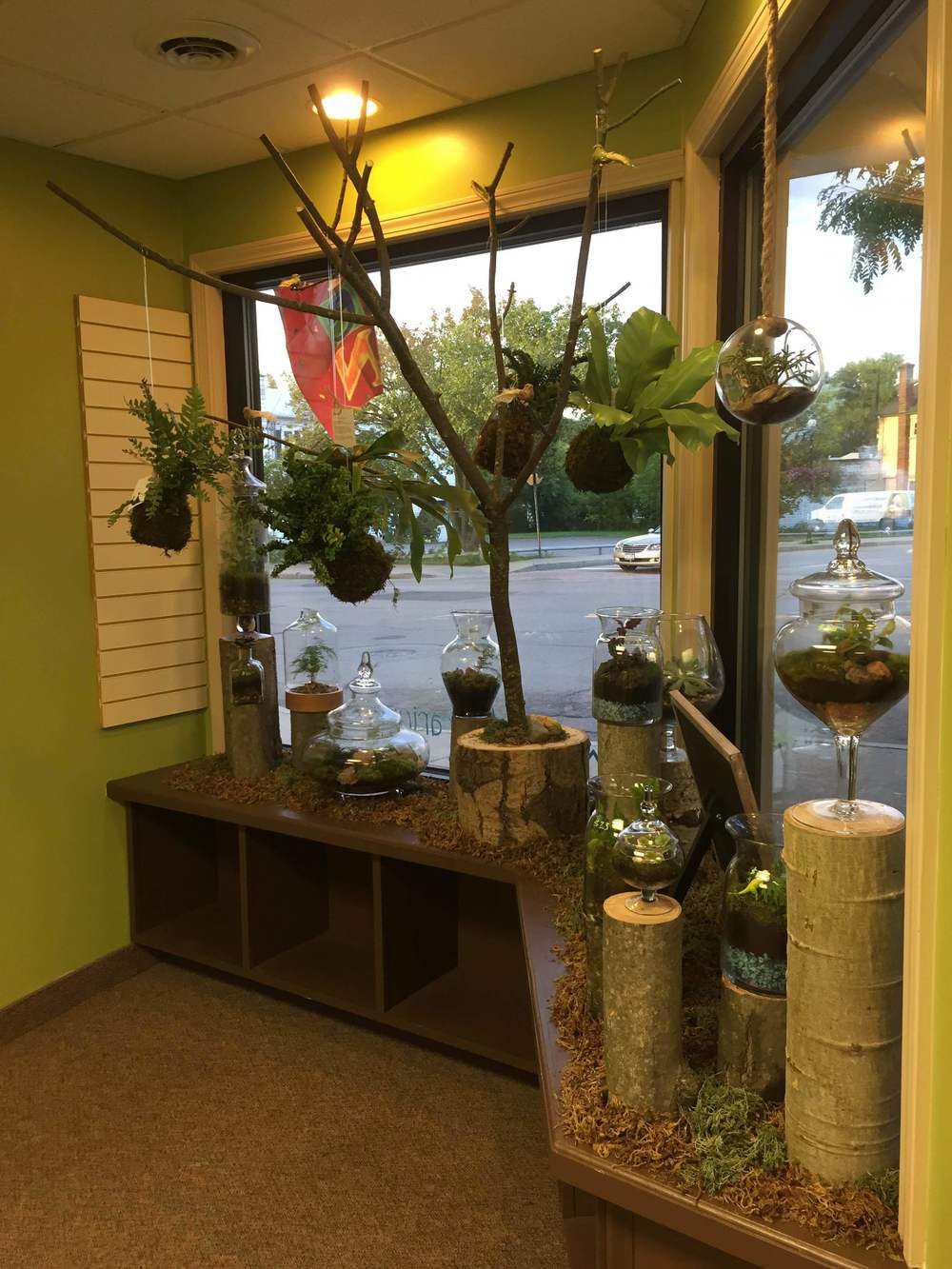 Jardin's unique display featuring open and closed terrariums and a hanging string garden.