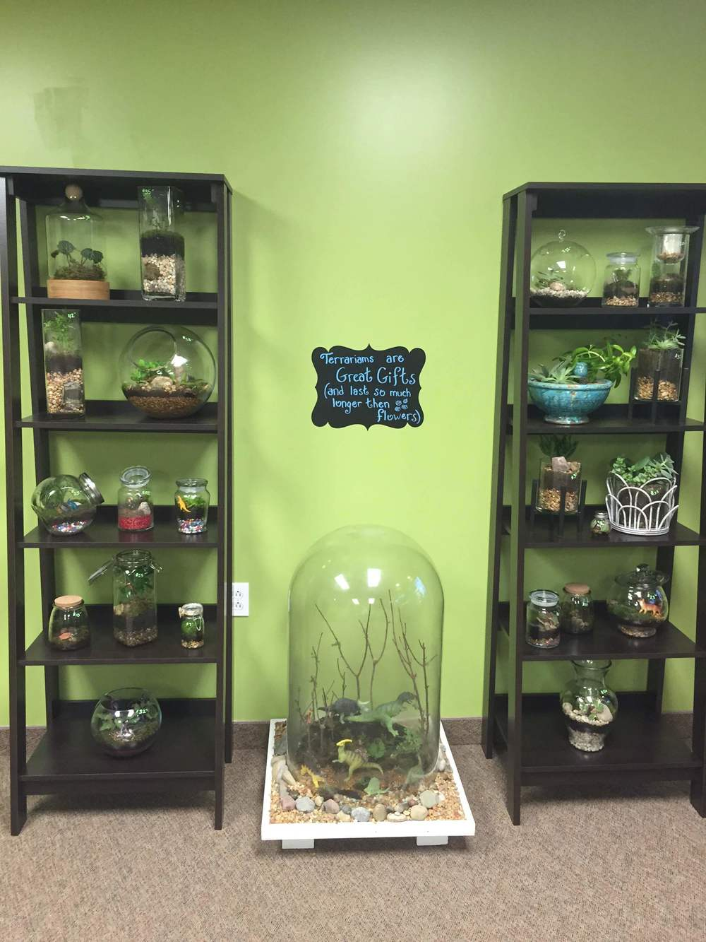Stop in and check out that GIANT terrarium!