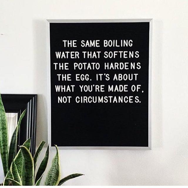 Potato. Potatoe. Perspective