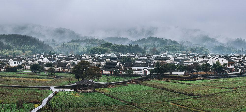 小雨,清晨(首页照片)