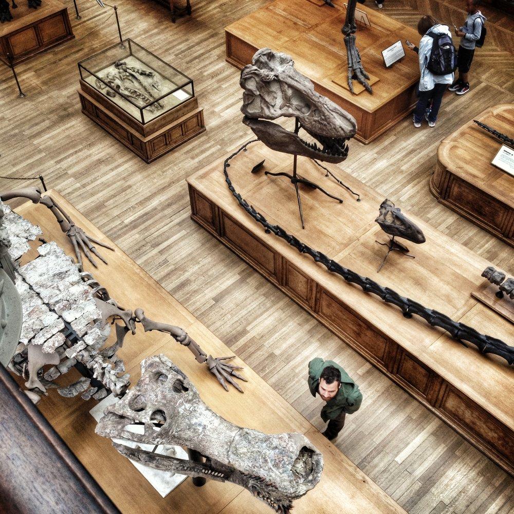 Paris_Natural History.jpg