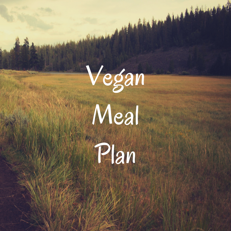 Veganism is one of the fasted growing lifestyle choices but it can still be unhealthy! This meal plan shows you how to be a healthy vegan including quality protein and essential fats.