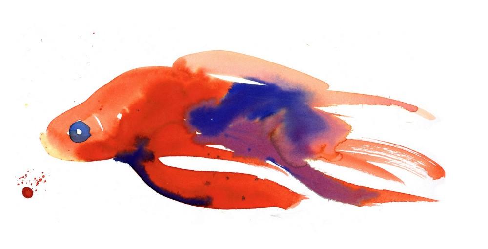 goldfish.jpeg