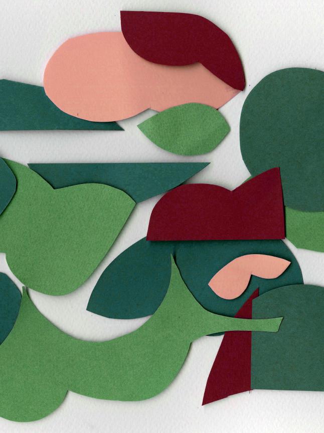 collage_crop.jpg