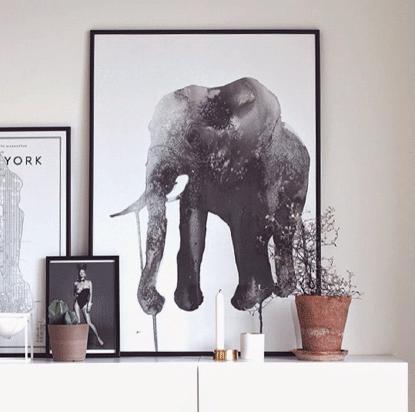 elephant_03.png