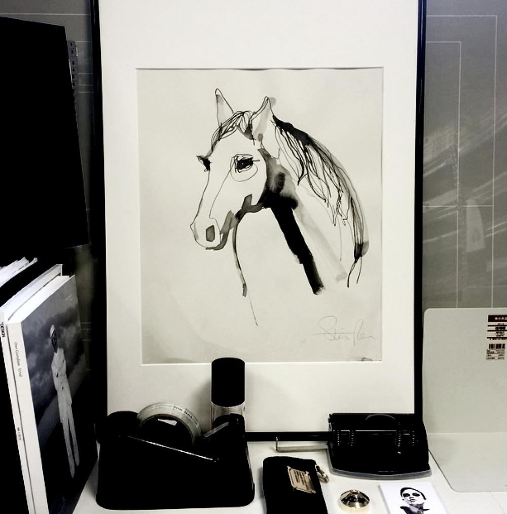 dark white horse.png