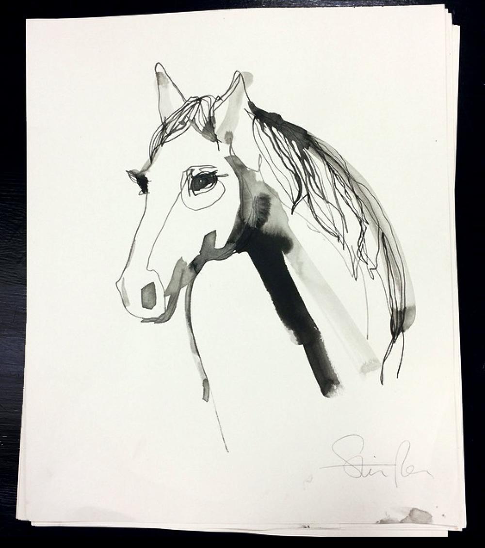 white dark horse.png