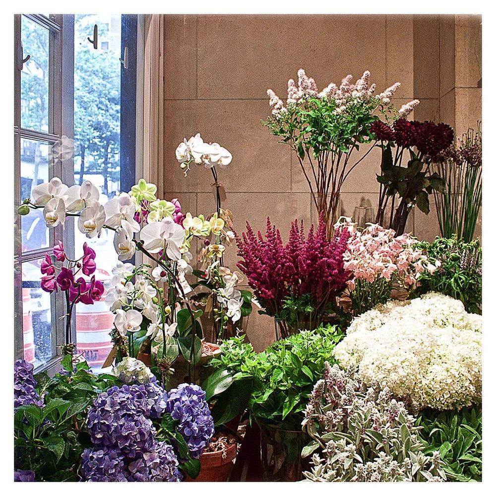 The Flower Shop.