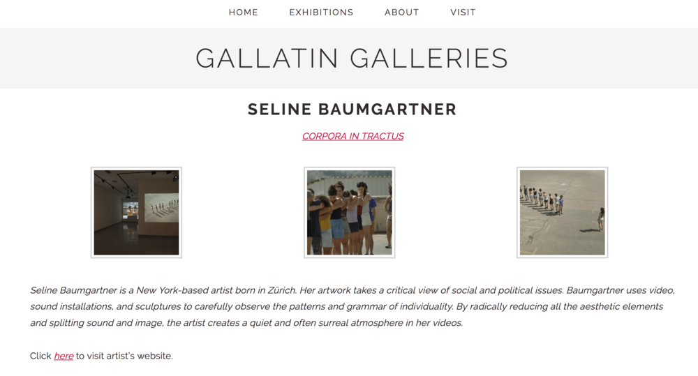 NYU Gallatin Galleries, New York Seline Baumgartner