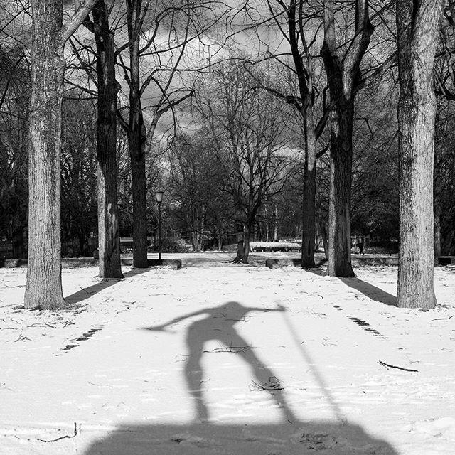 Munich in the Snow  #munchen #munchen_stadt #munichgermany #munich #munich🇩🇪 #germany🇩🇪 #Germany #deutschland #bavaria #bavariagermany #snow #park #shadows #winter #trees #freezing #blackandwhite #bnw #monochrome #b&w #cityscape #blackandwhitephoto #blackandwhitephotography #blackandwhitephotographer #blackandwhitephotos #monochromatic