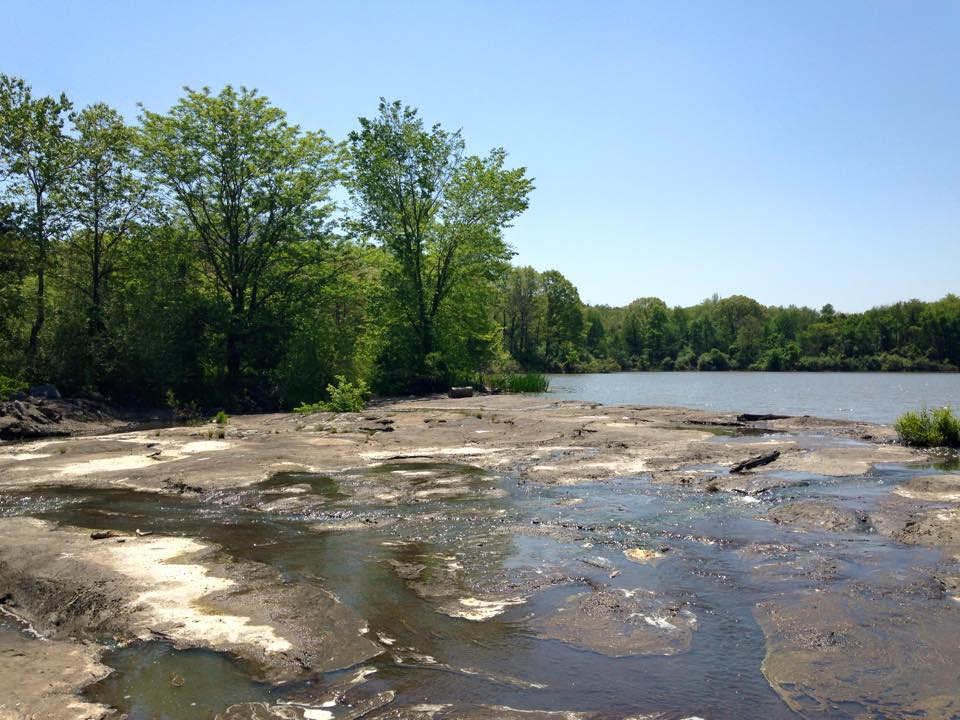 Cedar Lake Dam, near Carbondale in Spring of 2015.
