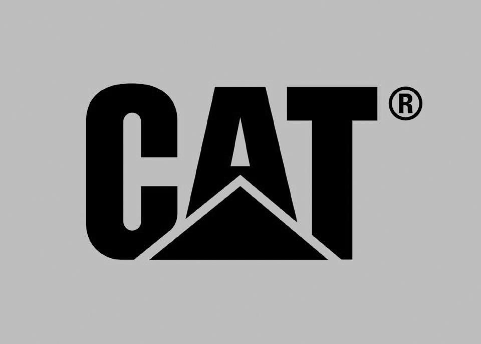 logo_cat_www.catfootwear.be.jpeg