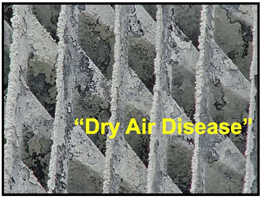 Dry Air Disease.jpg