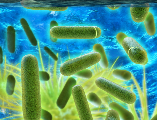 What is Legionella and Why Should You Care? —
