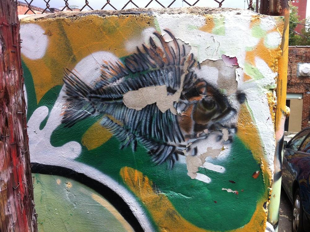 street art 3204