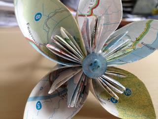 flower%2Bhead.JPG