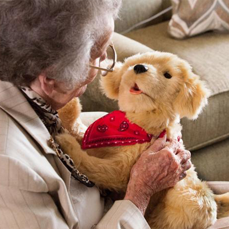 Pup-Lifestyle-1_1800x1800.jpg